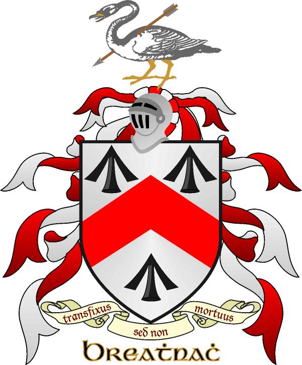popular irish surnames their origin and coat of arms