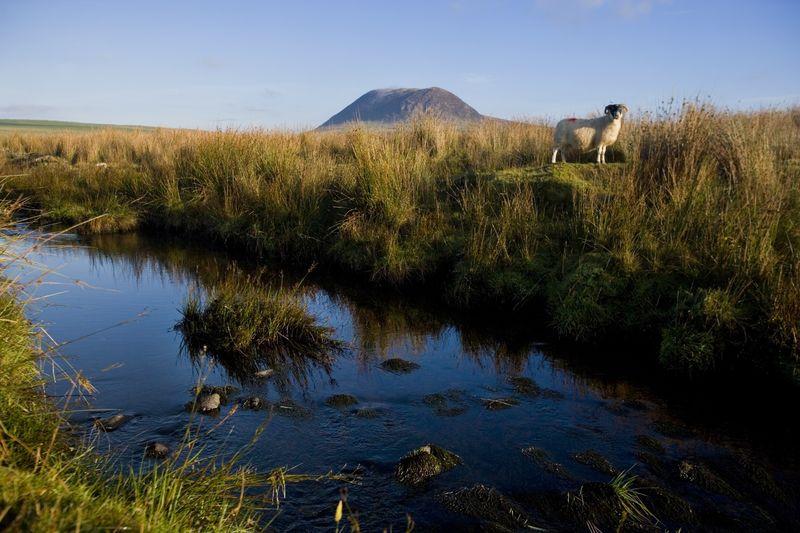 Slemish mountain-History of St. Patrick's Day