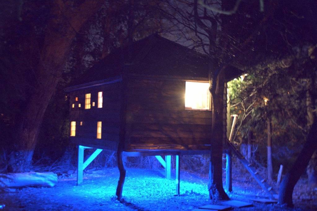 Treehouse Kilkenny