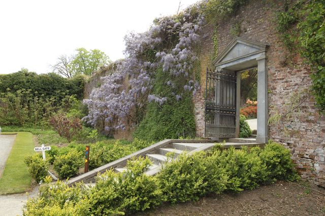 mount Congreve gardens County Waterford