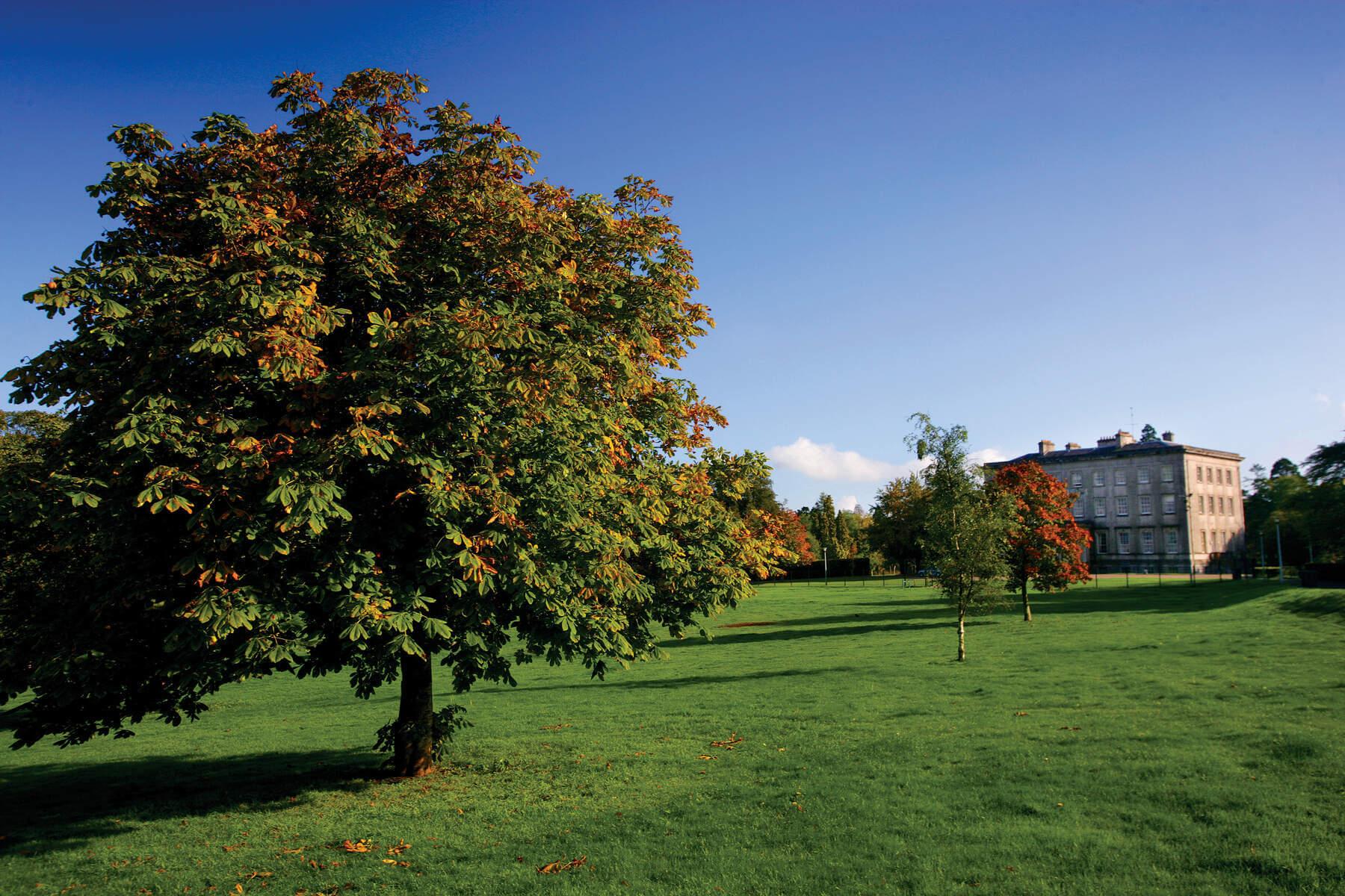 County Armagh Palace Demense