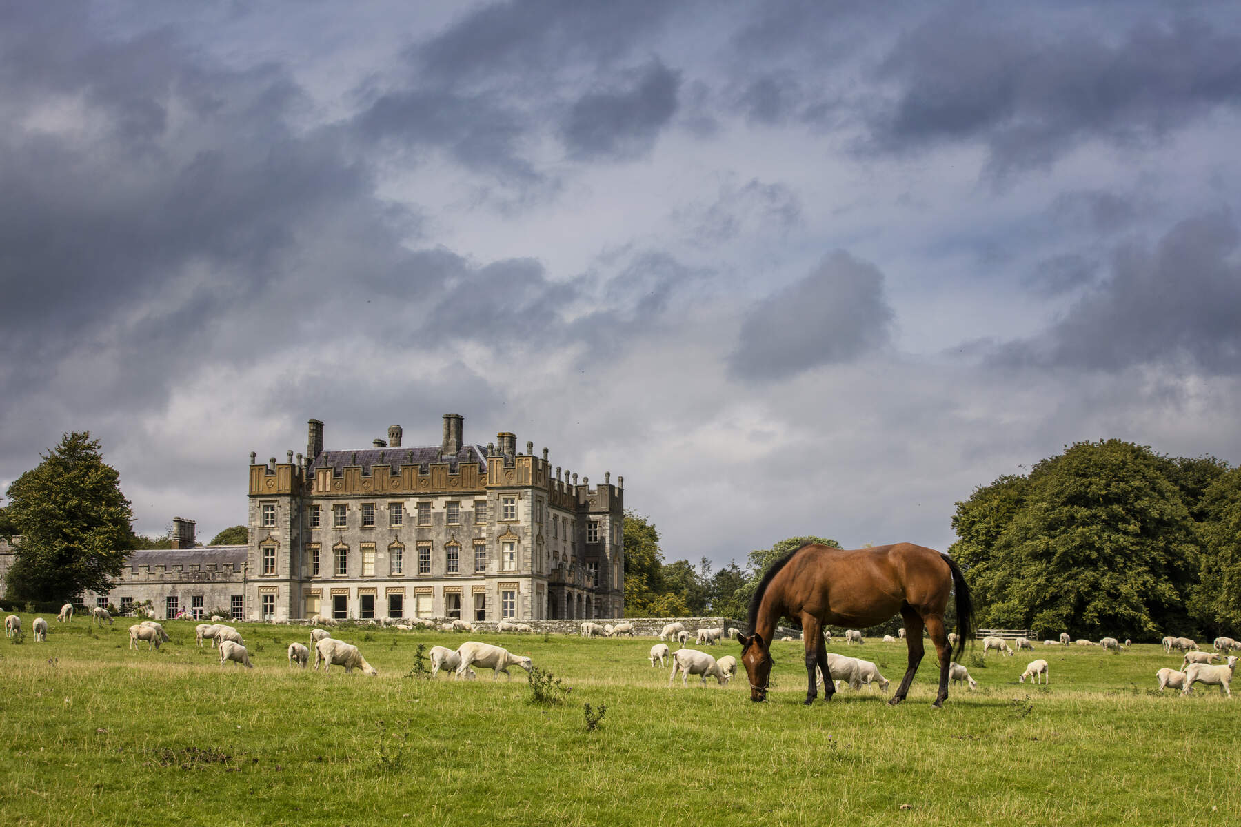 Borris House County Carlow