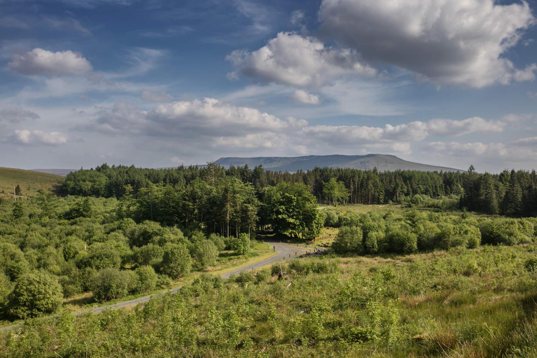 Burren Park County Cavan