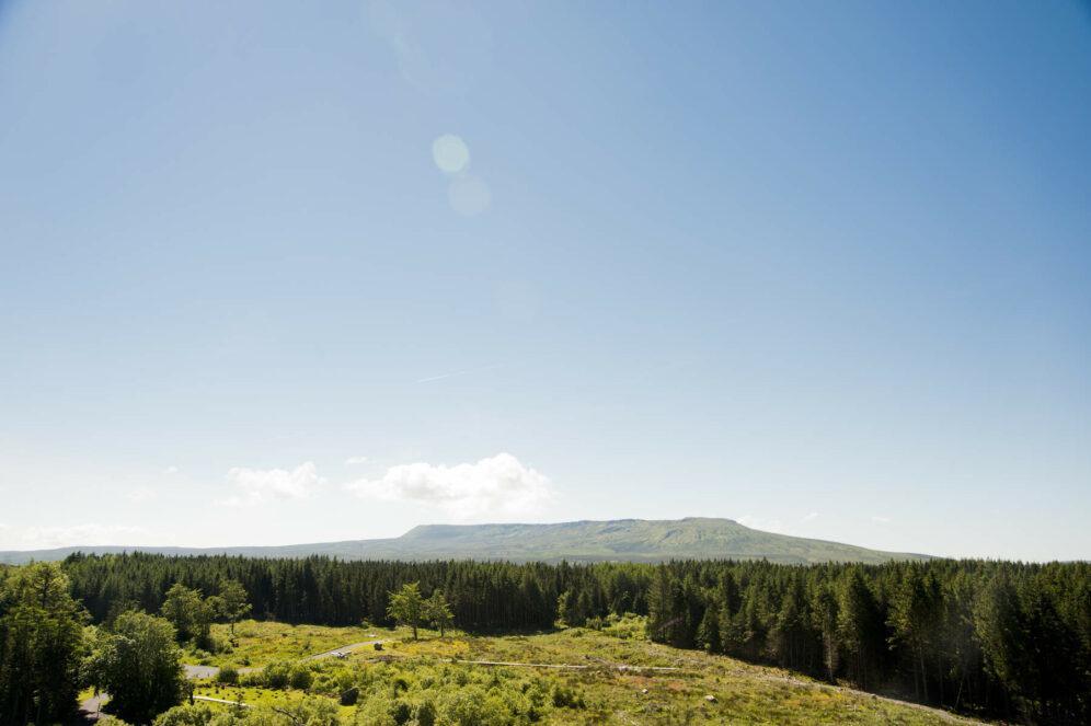 Cavan Burren