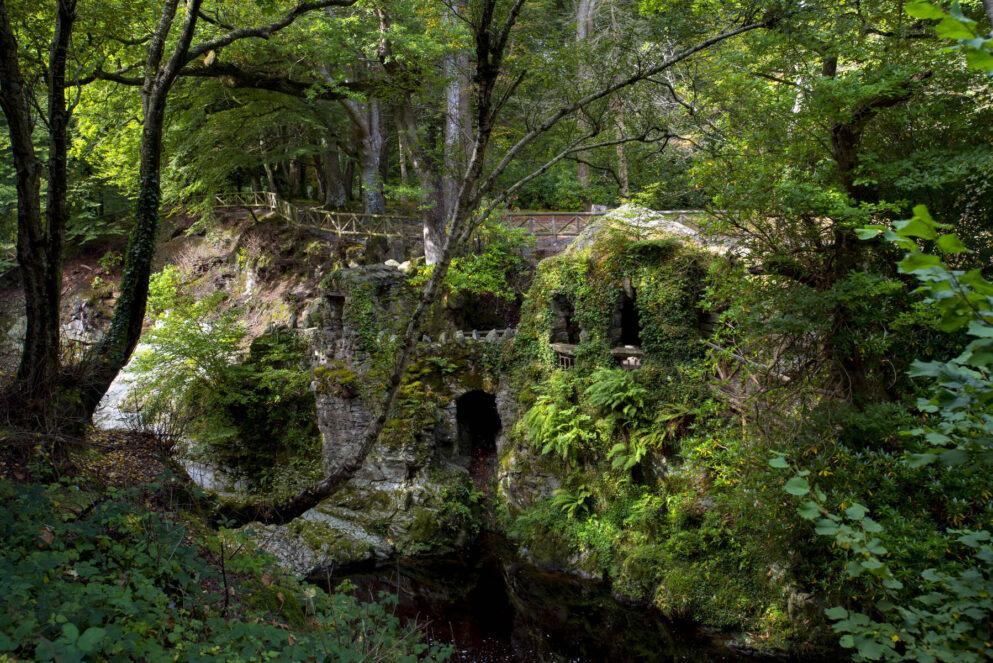 Walking Around Ireland.  Tollymore Forest Park