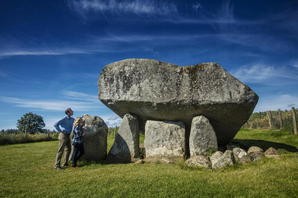 Brownshill Dolmen Ireland's Ancient East