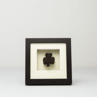 Real Irish Bog Lucky Shamrock