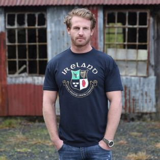 Navy Ireland 4 Provinces T Shirt